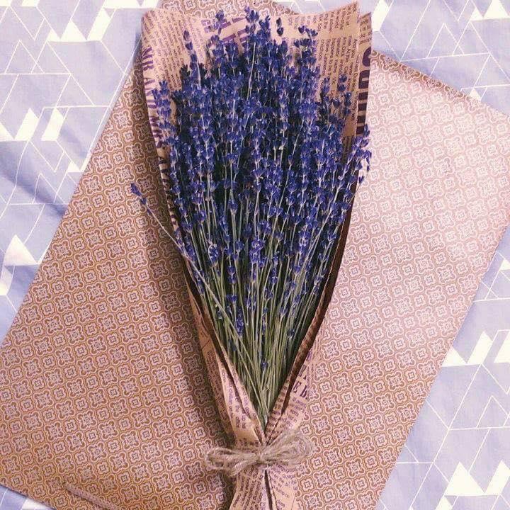 Hướng Dẫn Cách Bảo QUản Hoa Khô Lavender 1