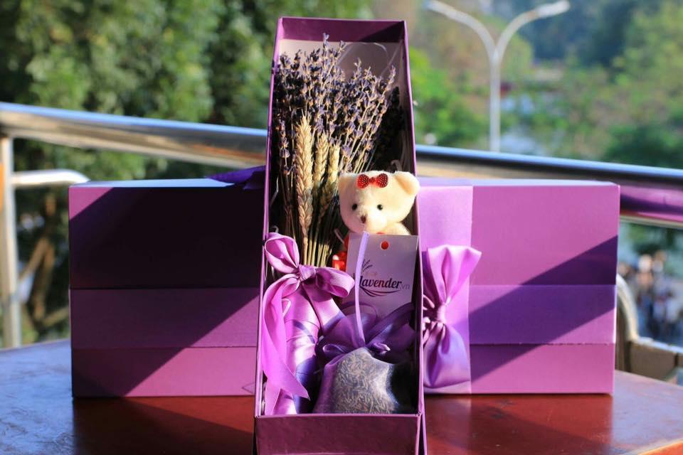 Hướng Dẫn Cách Bảo Quản Hoa Khô Lavender 2