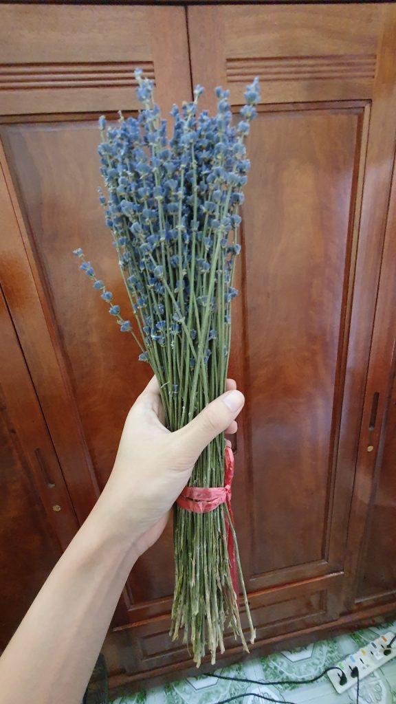 Xu Hướng Chuọng Hoa Khô Lavender 1