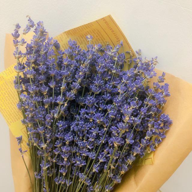 Hướng Dẫn Cách Phơi Hoa Khô Lavender 1